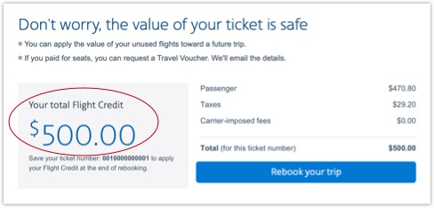 Flight credit on Your trip page